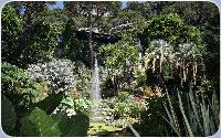 La Mortella, il giardino incantato di Ischia